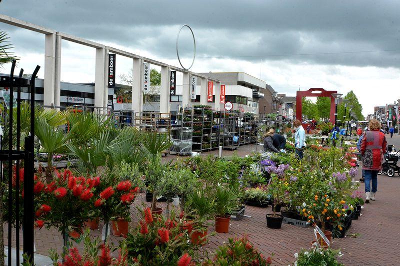 plantjes-markt-hgv (03)-1