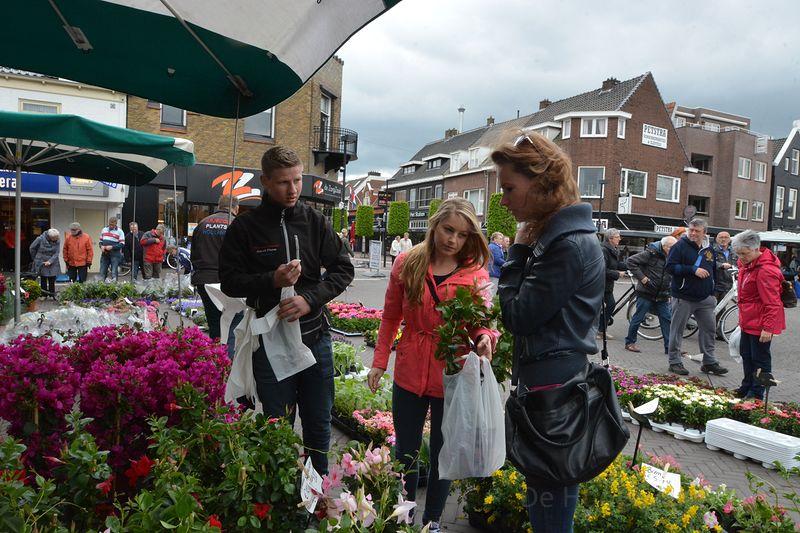 plantjes-markt-hgv (06)-1
