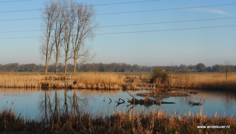 Door het gebied zoekt het water van het Oude Diep nu haar weg door een nieuw aangelegde sterk slingerende loop.