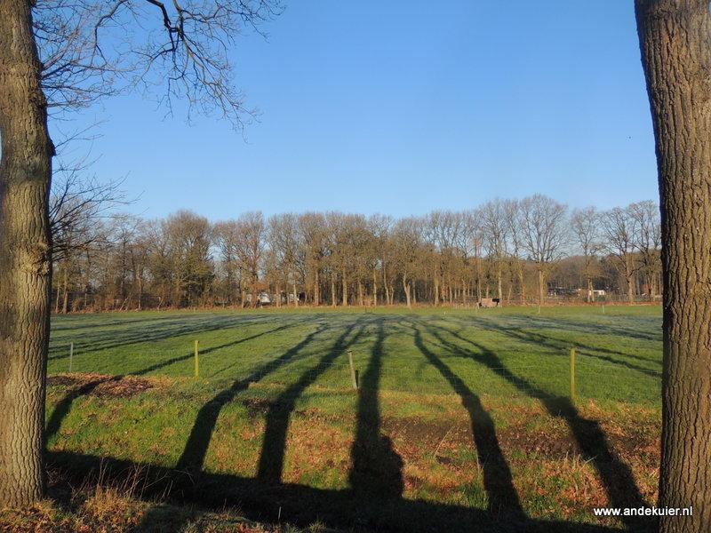 4-weide-wandeling (3)